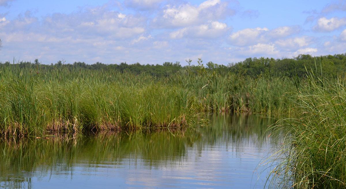 Fish Trap Lake Cushing MN